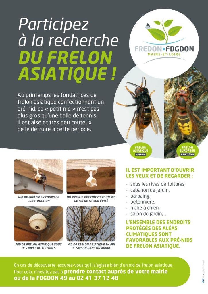 thumbnail of Maquette recherche frelon asiatique