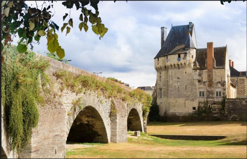 Visite guidée des collections - Château-musée