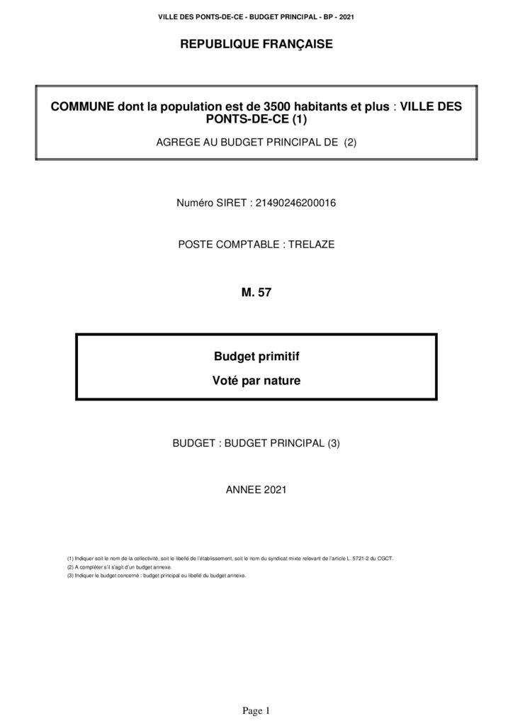 thumbnail of Budget primitif 2021 – Les Ponts-de-Cé